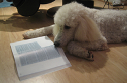 study_2